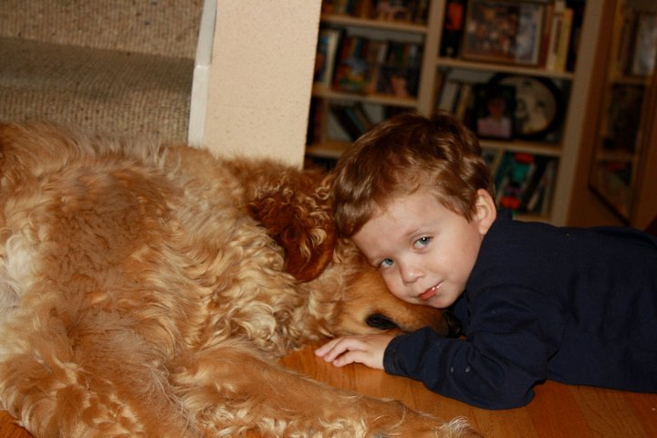 grief over loss of our dog